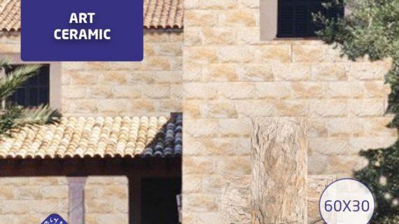 وصول تشكيلة جديدة من الديكورات الحجرية تجدونها في معارض صبحي أبو غلوس